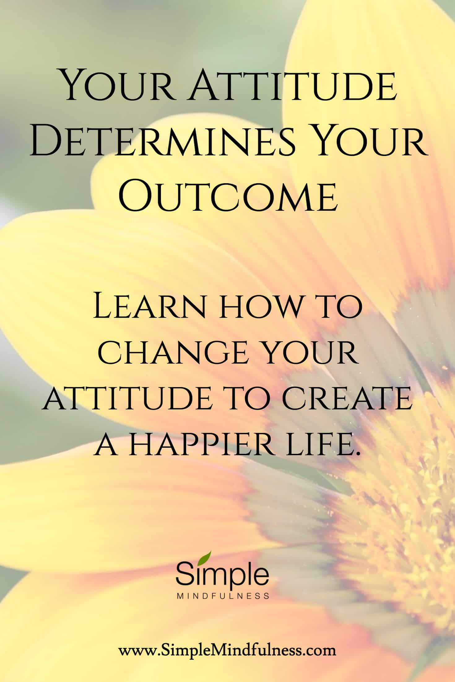 Your Attitude Determines Your Outcome: Find out how to change unwanted outcomes with a new attitude.