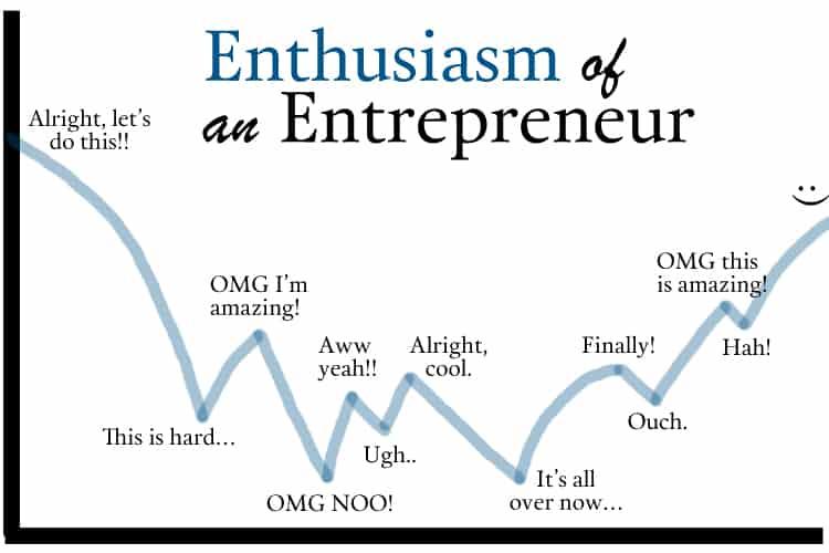 Roller coaster of an entrepreneur